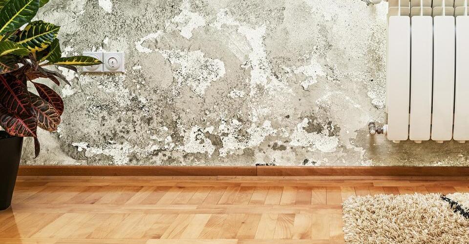 ¿Filtraciones de agua en tu hogar? Todo lo que tenés que saber